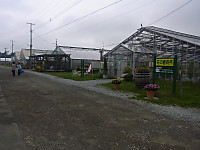 Srimg0347
